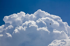 White storm cloud and blue sky Stock Images
