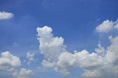 The white cloud and blue sky Stock Photos