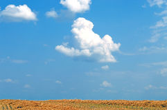 White cloud on blue sky. In sunny summer day Royalty Free Stock Photography