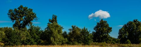 White cloud landscape with deciduous forest and meadow on a sunny day.Web banner stock photography