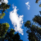 White cloud over blue sky Royalty Free Stock Photography