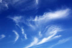 White clouds. Some white clouds in the clear sky Royalty Free Stock Photos