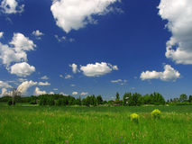 White clouds. Above a summer field Stock Images