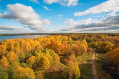Road in autumn forest, the view from the height . Autumn landscape . Royalty Free Stock Photography