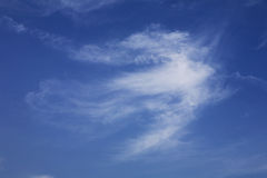 White clouds on blue sky. An elegant white clouds on blue sky Stock Photography