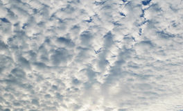 White clouds on blue sky. Stock Images