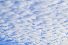 White clouds on blue sky. Royalty Free Stock Image
