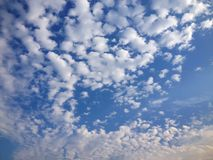 Clouds. White clouds on a blue sky. White cirrus clouds on a blue sky Stock Photo
