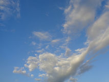 White clouds in blue sky. Blue sky with white cumulus clouds Royalty Free Stock Images