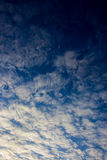 White clouds on the blue sky. Stock Image