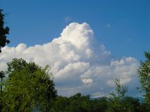 White clouds on the blue sky. In nature royalty free stock images