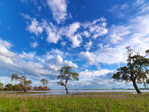 White clouds blue sky over lake Royalty Free Stock Images