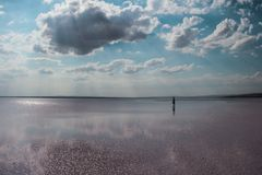 White clouds and blue sky reflected in the lake. Salt lake Stock Photos