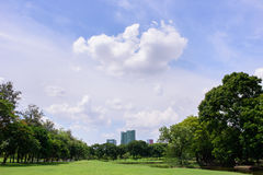 White clouds&bright blue sky. Beautiful white clouds&bright blue sky above public park in downtown Royalty Free Stock Photography