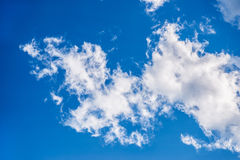 White clouds. Stock Images