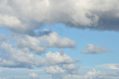 White clouds Royalty Free Stock Images