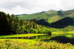 White clouds, mountain forest, grassland, shangri-la scenery stock photo