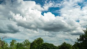 White clouds moving on the blue sky over trees in the forest of Thailand. Time Lapse stock footage