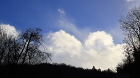 White clouds moving slowly in a blue sky with shady trees. In Pyrenees, France stock video footage