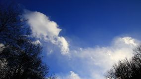 White clouds moving slowly in a blue sky with shady trees. In Pyrenees, France stock footage