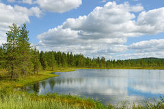 White clouds over blue lake. Northern landscape. White clouds over blue lake Royalty Free Stock Photography