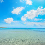 White clouds over La Pelosa beach Stock Images