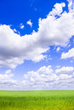 White clouds ower green meadow. Stock Image