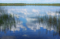 White clouds are reflecting in blue water. Volyn region. Ukraine Royalty Free Stock Photography