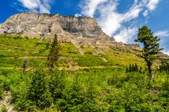 A High Mountain Meadow Leads to a Flat Ridge of Rock in Glacier National Park. White clouds spread over a flat mountain ridge high above a green grassy meadow in royalty free stock image