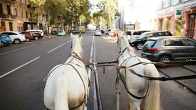 White coach is riding down the street. From the first person. The horses are harnessed. stock video footage