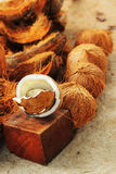 White coconut and brown spathe. Stock Image