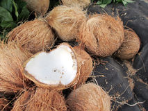 White coconut Royalty Free Stock Photo