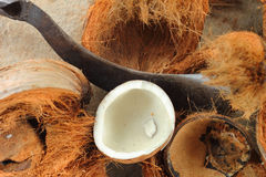 White coconut and brown spathe  with  knife. Stock Image