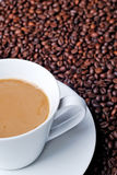 White coffee cup on beans Stock Images