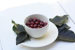 White coffee cup full of raw red freshly picked coffee beans. On a white timber table Stock Photography