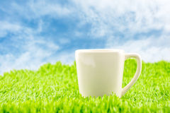 White coffee cup on green grass with blue sky,Spring Season Stock Photo