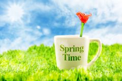 White coffee cup with spring time word and red flower made of gl Stock Image