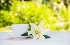 White coffee cup and white lily on the table. Purity and tenderness. Morning coffee in the garden. Copy space. White coffee cup and white lily on the table Royalty Free Stock Photo