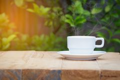 White coffee cup on wooden table with blurred green plant backgr Royalty Free Stock Photo