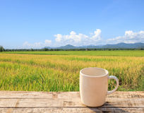 White Coffee cup on wooden table with green paddy rice backgroun Royalty Free Stock Photo