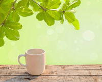 White coffee cup on wooden table at morning sunlight Stock Photography