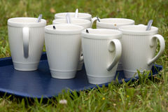 White coffee cups. Seven white coffee cups with spoons  on a blue tray in the grass Royalty Free Stock Photography