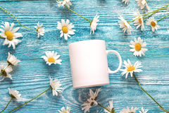 White coffee mug with chamomile flowers on blue wooden backgroun Royalty Free Stock Photography