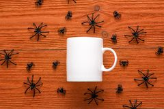 White coffee mug with decorative spiders on orange background. Stock Image