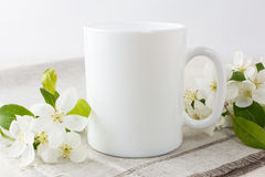 White coffee mug mockup with apple blossom. White coffee mug mockup with blossoming apple tree branch.  Empty mug mock up for design promotion Stock Photography