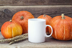 White coffee mug with pumpkins and ears of wheat on the old wood Stock Photography
