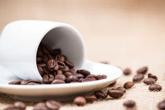 White coffeecup with coffeebeans on gunny background. White coffeecup with spilled coffeebeans on plate and gunny background Royalty Free Stock Images
