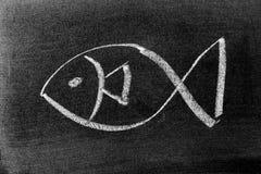 White chalk drawing in fish shape on blackboard background