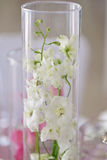White colored delphinium close up. White colored delphinium flowers on a table in a glass flask. wedding table decoration close up Stock Photography