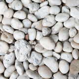 White Conglomerate Stone Royalty Free Stock Image